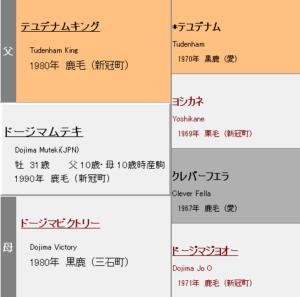 ドージマムテキ血統